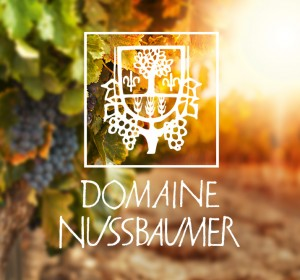 <span>Domaine Nussbaumer</span><i>→</i>